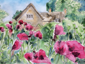 Holly Cottage Poppies Acrylics
